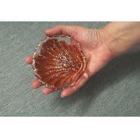 Small Scallop Shell Silicone Dish Mould